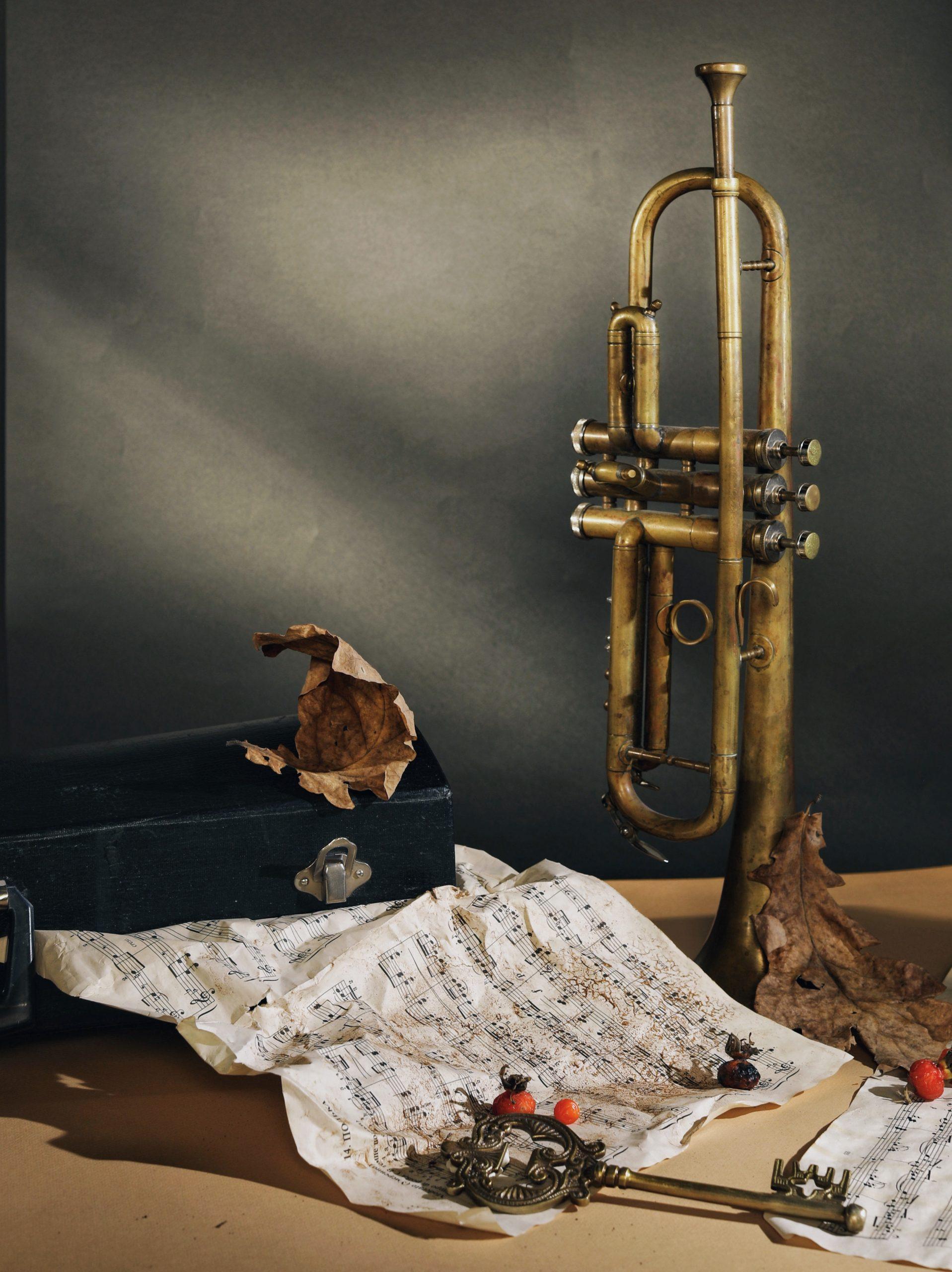 Jandelsbrunner Musikanten